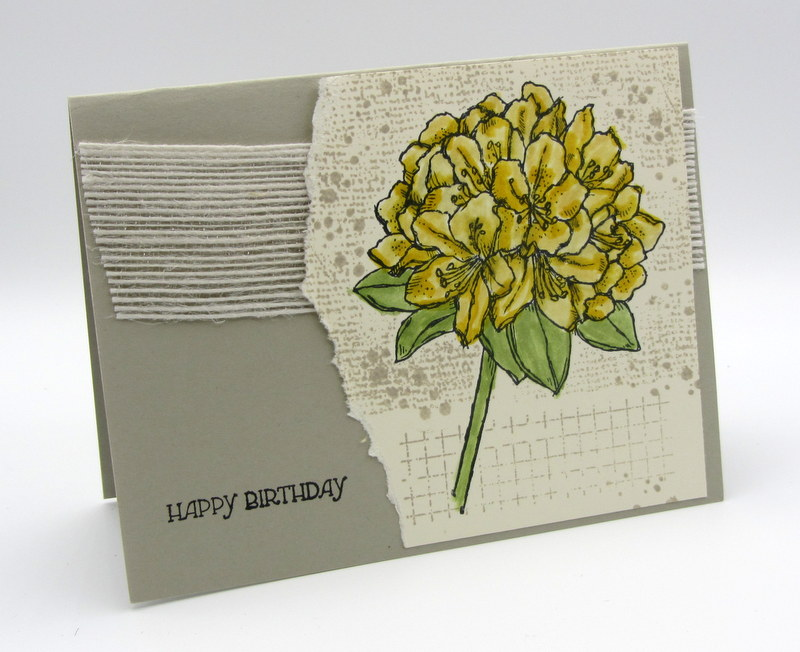 birthday-card-from-bev-gomez